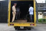 Vận chuyển gỗ lậu bằng xe thư báo