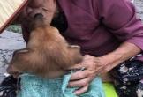 Dậy sóng mạng: Nụ hôn tình nghĩa gây bão dư luận