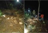 Thi thể nam giới không còn nguyên vẹn ở Thanh Hoá nghi bị lợn rừng rỉa thịt