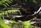 Quảng Bình: Công viên bỏ hoang hơn 13 năm gây lãng phí