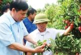 Xuất khẩu nông, lâm, thủy sản đạt 40 tỷ USD trong tầm tay