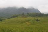 Miền Bắc đón gió mùa đông bắc, Nam Trung Bộ mưa to