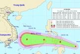 Xuất hiện cơn bão mới, giật cấp 12 hướng vào Nam Trung bộ