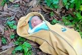 Bé gái sơ sinh bị bỏ trong nghĩa trang ở Bình Thuận