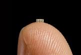 Supermicro khẳng định không có chip 'hạt gạo' trong bo mạch