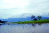 Mộng mơ hồ Lắk