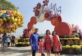 Đà Nẵng: Đường hoa Tết nhộn nhịp khách du xuân