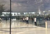 Nhân viên Apple tại trụ sở mới thường xuyên đập đầu vào kính