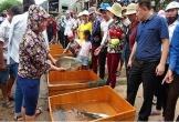 Đặc sắc lễ hội thi cá trắm trên sông Son (Quảng Bình)
