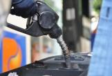 Dè dặt với xăng E5, người dân chi thêm tiền mua RON 95: Lãng phí cực kỳ lớn