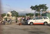 Taxi gặp nạn nát đầu khi gặp đàn bò ngủ giữa đường