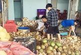 Phạt 60 triệu đồng doanh nghiệp dùng hóa chất tẩy trắng vỏ dừa