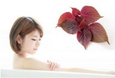 Tắm bằng những loại thảo dược này để sở hữu da khỏe đẹp hoàn hảo