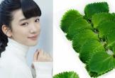Học bí quyết làm đẹp từ lá tía tô của phụ nữ Nhật