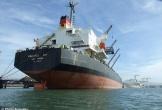 Tàu Vinalines Sky: Mua 661 tỷ đồng, sau 10 năm xin bán 89,6 tỷ đồng