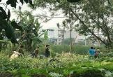 Bắt nghi phạm vụ thi thể nam giới trong bao tải vứt ven đường ở Hà Nội
