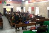 Phạt tù đối tượng giết hại động vật ở Vườn Quốc gia Phong Nha-Kẻ Bàng
