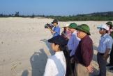 Quảng Bình: Nỗ lực phục hồi, cải tạo môi trường trong khai thác quặng titan
