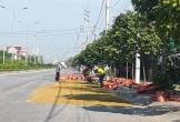 Sau tai nạn chết người, lúa vẫn phơi tràn trên quốc lộ