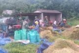 Nghĩa tình quân dân từ ruộng lúa biên phòng