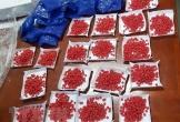 Thanh Hóa: Bắt giữ đối tượng tàng trữ gần 6.000 viên hồng phiến