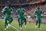 Hàng thủ mắc lỗi ngớ ngẩn, Ba Lan thua sốc Senegal