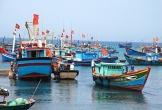 Quảng Bình: Hơn 65,3 tỷ đồng hỗ trợ chủ tàu cá khai thác hải sản vùng biển xa