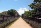 Về làng văn hóa Xuân Lai