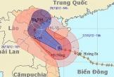 Bão Sơn Tinh năm 2012 từng tàn phá khủng khiếp ở Việt Nam