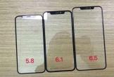 Màn hình bộ ba iPhone 2018 xuất hiện