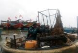 Ngư dân Quảng Bình dùng xe cẩu nâng thuyền vào bờ tránh bão