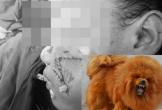 Kinh hoàng bé gái 8 tháng tuổi ở Hà Nội bị chó ngao Tây Tạng cắn tử vong