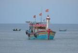 Quảng Bình: Tàu cá không thể vào cảng vì cửa biển bị bồi lấp nghiêm trọng