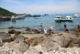 Cù Lao Chàm - Nơi ngư dân làm bảo tồn