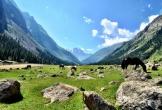 Ghi nhớ những điều hữu ích này để có một chuyến đi tới Kyrgyzstan tốt đẹp hơn mong đợi