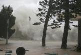 Viện phó lý giải siêu bão Mangkhut không vào Việt Nam