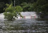 Số người chết vì bão Florence ở Mỹ tăng lên 31