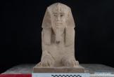 Tình cờ phát hiện bức tượng nhân sư bằng đá sa thạch niên đại hơn 2000 năm
