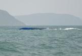 Thuyền viên sống sót trong sà lan lật úp trên biển 2 ngày