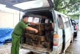 """""""Nóng"""" tình trạng vận chuyển, buôn bán gỗ lậu dịp Tết"""