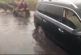 Ôtô mắc kẹt được xe trâu kéo thoát khỏi đầm lầy