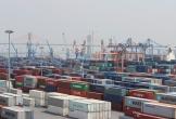 Việt Nam lại nhập siêu gần 1,3 tỷ USD do ảnh hưởng Tết Kỷ Hợi