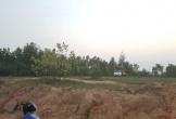 Kinh hãi phát hiện người chết treo cổ trong rừng tràm ở Quảng Bình