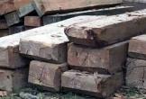 Yêu cầu điều tra vụ xe chở gỗ lậu tông chết 2 người dân ở Quảng Bình
