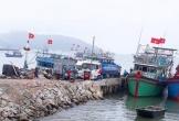 Cảng Mũi Ông ở Quảng Trạch: Mới đổ đất, cắm cọc đã ép ngư dân