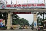 Gang thép Thái Nguyên tham vọng lãi lớn sau lình xình 'dự án đắp chiếu'