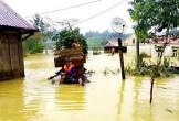 Sớm khắc phục hệ thống thủy lợi bị hư hại sau mưa lũ