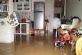 3 cha con tử nạn vì bị nước lũ cuốn trôi