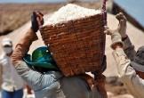 Xuất cấp 815 tấn muối cho tỉnh Quảng Bình