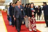 Đại biểu dự khai mạc Đại hội Đại biểu toàn quốc lần thứ XIII của Đảng